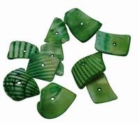 Zee schelpjes groen